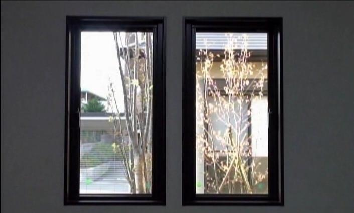 シンボルツリーを眺める窓(北九州市内施工事例)©八重洲技建