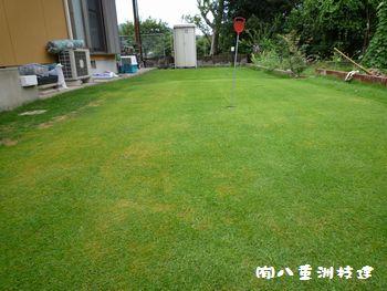 8月7日(日)芝刈り